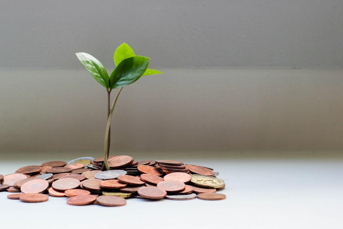 finanzas básicas para arquitectos